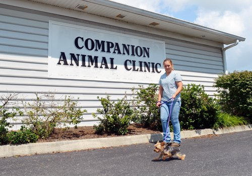 Companion Animal Clinic Entrance